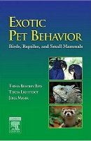 Exotic Pet Behavior
