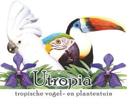 Utropia